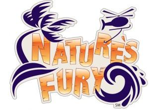 res Fury Logo SM
